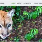 Coalition for Rainforest Nations